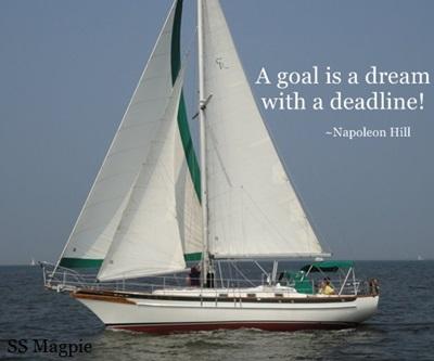 8 Steps Forward:  Living the Dream